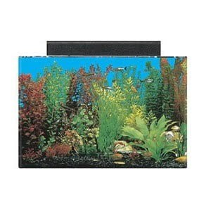 seaclear acrylic acuario