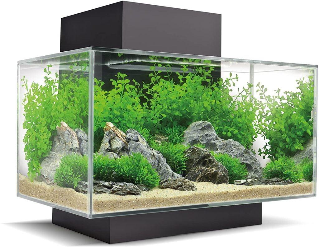 fuval nano acuario